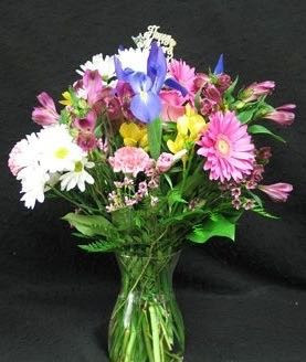 """A fresh and colourful assortment of spring blooms, Eco and local. Zing for Spring! We deliver fresh """" Spring Flowers """" from the Niagara area of Ontario."""