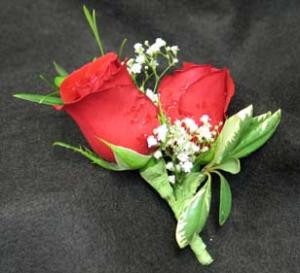 Two Roses and baby breath. For a prom, wedding, anniversary, or any special event. Hatcher Florist delivers.