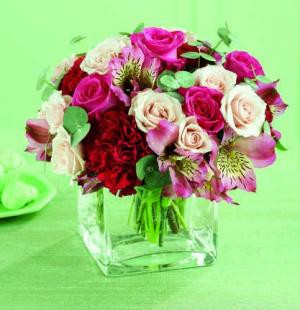 Pale pink spray roses are gently caressed by hot pink roses, burgundy carnations and pink alstroemeria in this sweet bouquet. Held in a clear rectangular glass vase. We use Demar sweetheart roses.