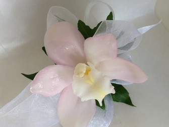 A lovely delicate pink ( we have other colours ) Cymbidium wrist-let made by our florists in our Toronto-North York flower shop. Please give us advance notice to create your stunning wrist-let. Great fro weddings, prom, anniversaries and special birthdays.