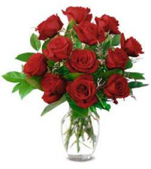 A breathtaking dozen – beautiful red Roses arranged in a vase with assorted greenery.  We use Freedom Red Roses, grown by Hosa in South America.  Let our flower shop deliver your anniversary roses today.