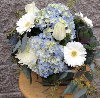 Blue hydrangea, white gerbera, white cushion chrysanthemums, seed eucalyptus and kale. We design this in our Toronto flower shop for your special events and holidays. We cover North York, Toronto, Vaughan, Thornhill, Richmond Hill and all of the Golden Horseshoe.
