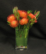 Compact design of Leucospermum in a rectangular vase. We wrap the stems with a decorative leaf to hide the mechanics of the design and to add interest. Great long lasting arrangement.