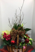 "A large full tropical planter with made with a fantastic combination of plants such as Cypress, amaryliss, violets, kalanchoe, ivy branches and a cyclamen. The selection will vary as we always use the freshest plants. A living ' Holiday Gift "" great for the plant lover. Hatcher Florist delivering flowers and plants through out the Toronto area and Markham, Vaughan, Aurora, Newmarket, Brampton, Mississauga, Oakville and Hamilton."