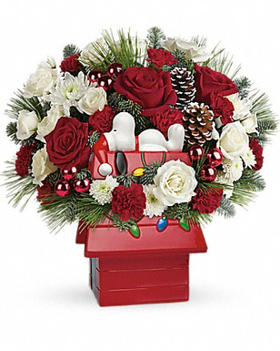 This charming arrangement includes red miniature carnations, white button spray chrysanthemums, white cushion spray chrysanthemums, noble fir, white pine, and seasonal decorations. Delivered in Snoopy's Cookie Jar by Teleflora.
