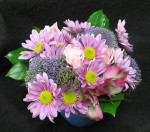 A compact elegant arrangement made of Sierra Eco (organic) flowers. A great gift for someone at the office or in a home. Daily deliveries by our 3rd generation flower shop.