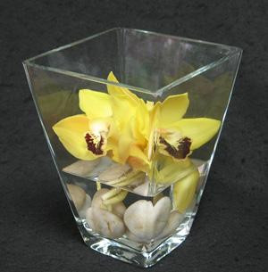 Three hearty Cymbidium orchids, colours varying with availability. Artistically placed on a bed of round beach pebbles in a glass vase. Happy to deliver this for you. Toronto, North York and areas.