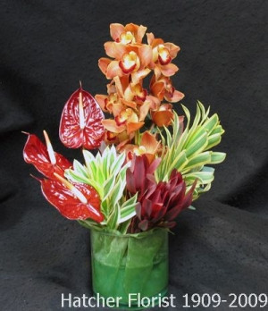 A truly stunning array of tropical flowers arranged in a glass vase. This is a long lasting gift great for, a holiday, business gift, or an expression of sympathy.