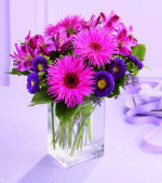 "A walk through this little ""garden"" is certain to catch your eye! These spider Gerbera daisies are brilliantly fuchsia and beautifully offset by deep purple Matusmoto asters and alstroemeria. Arranged in a clear rectangular glass vase, this bouquet is ready to help celebrate any occasion."