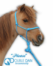 Blue foal halter - fits Please our mini horse (lead sold separately)