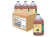 Agave Carton of 4
