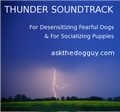 Ask the Dog Guy Thunder Soundtrack for Preparing Puppies for Thunderstorms and Desensitizing Fearful Dogs
