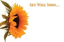 Gell Well Soon - Sunflower
