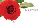 I Love You - Red Rose Card