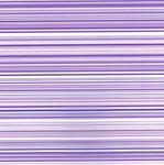 Strong Purple  Lilac Stripes Cellophane