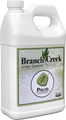 Branch Creek - Paleo