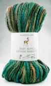 Plymouth Yarn - Baby Alpaca Grande Hand Dye (2304)
