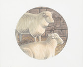Hand-Painted Needlepoint Canvas - Susan Roberts - LGDOR202 - Sheep Rondel