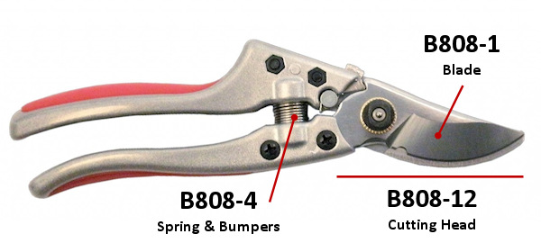 b808-new2.jpg