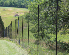 How High Does A Deer Fence Need To Be Deerbusters Com