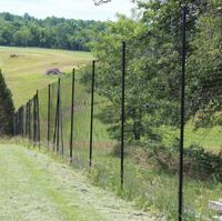 Deer Fences Vs Animal Fences Deerbusters Com
