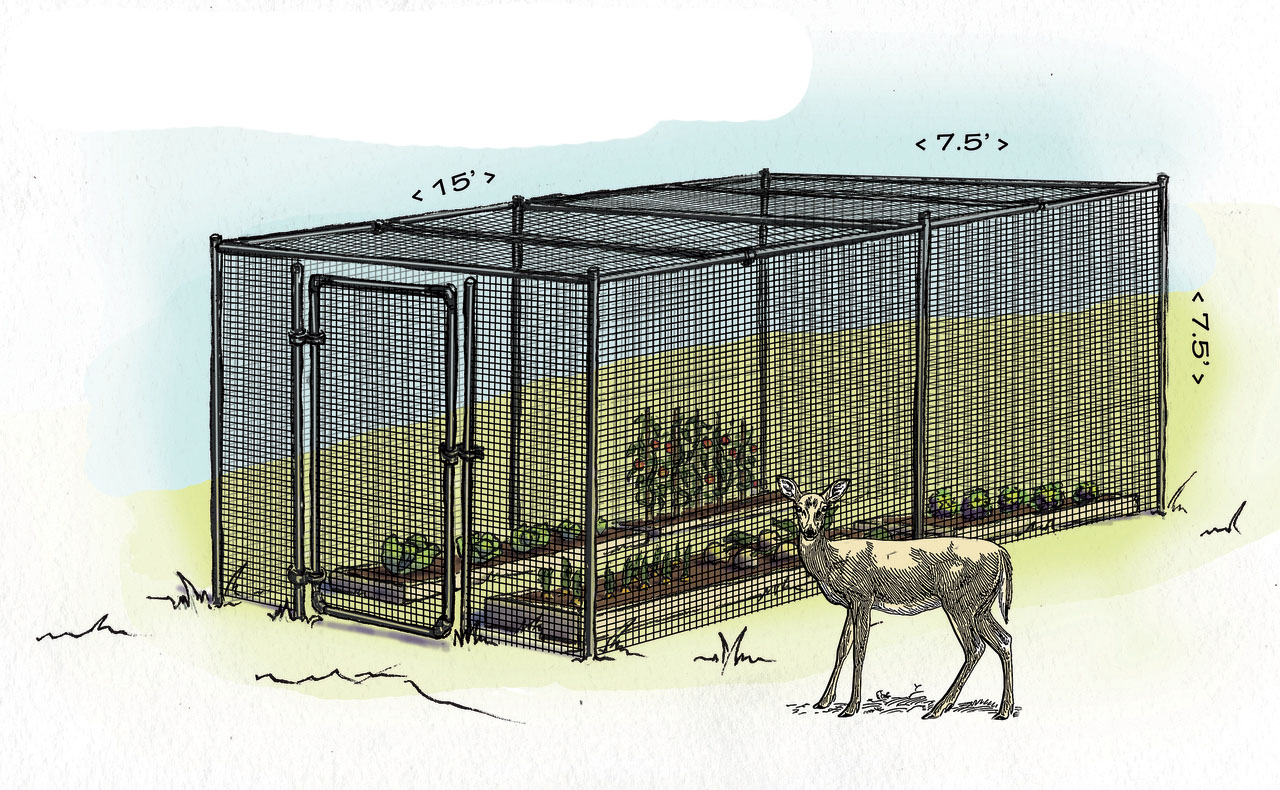 Why Build An Enclosed Fence Deerbusters Com