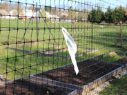 fence-and-deck-newsletter-img.jpg