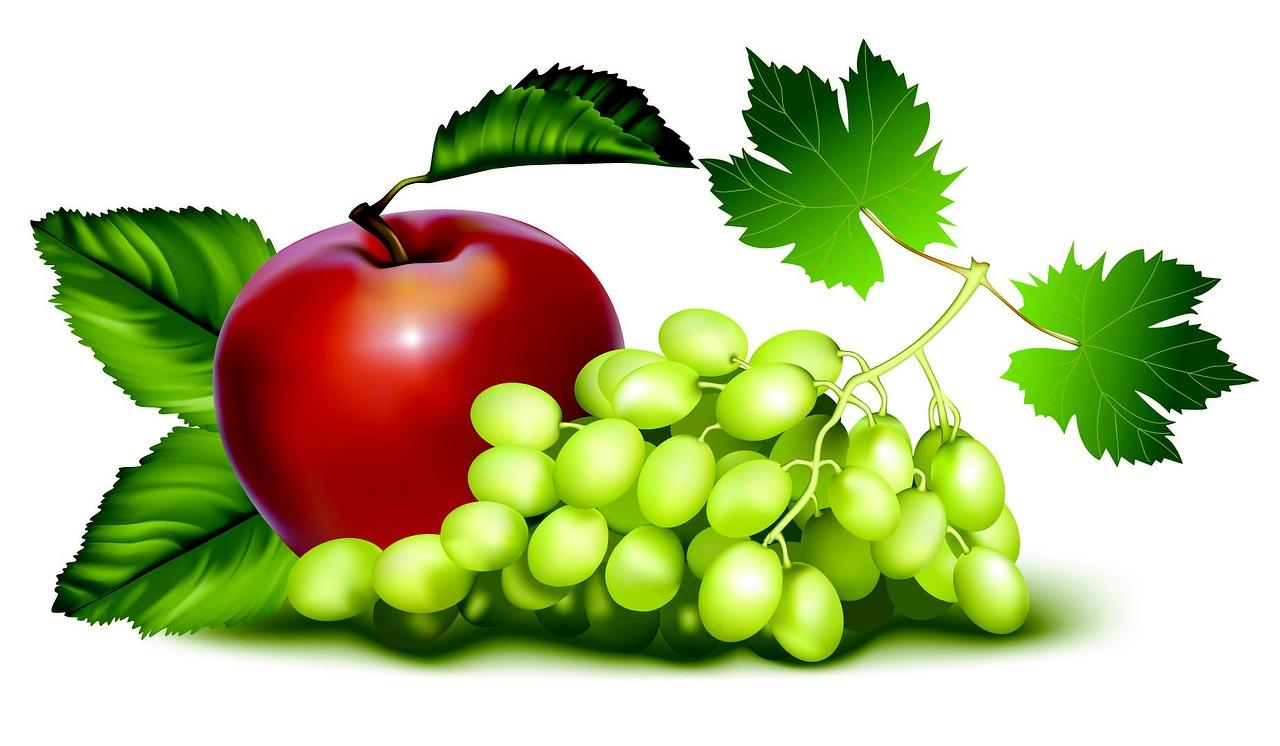 fruit-97479-1280.jpg