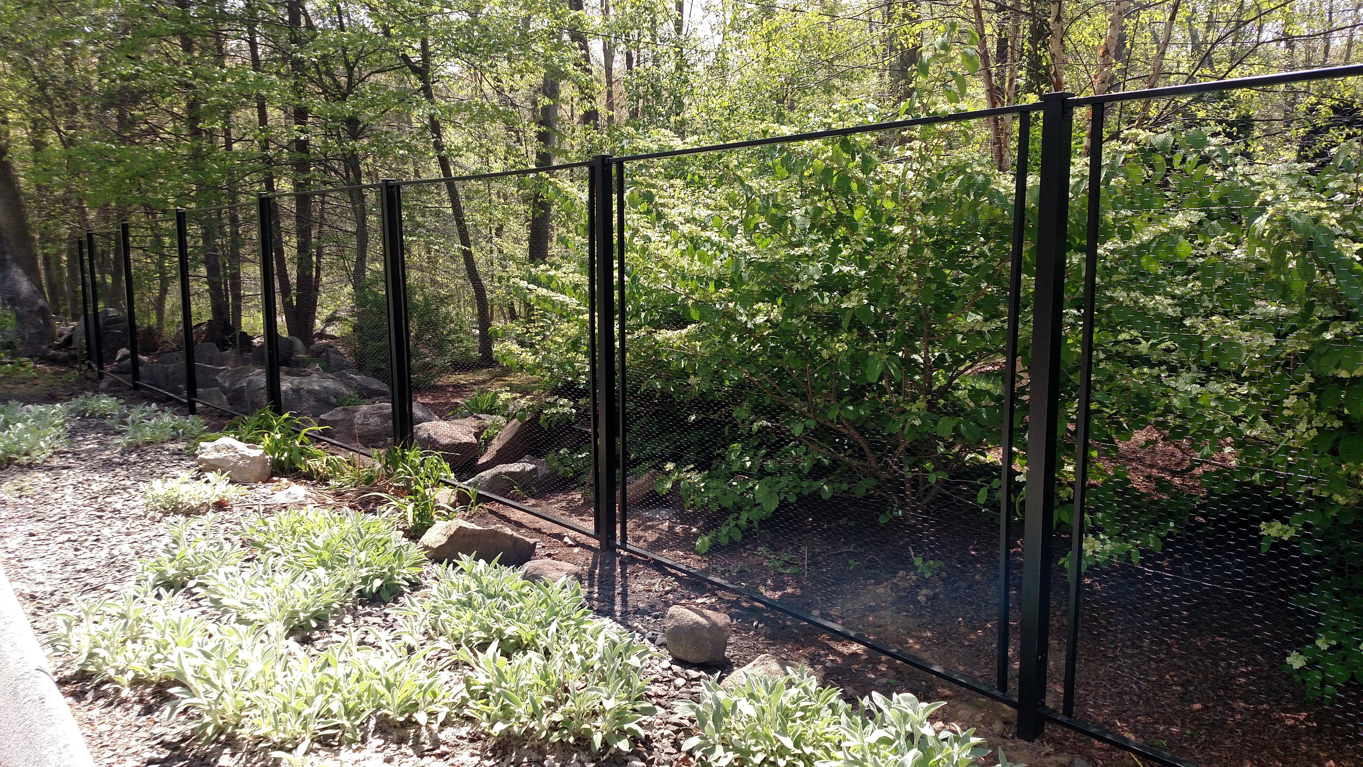 Deer Fence Kit Deer Proof Garden Best Deer Fence Ideas On Garden Fences Garden Deer Proof Garden In 2020 Fenced Vegetable Garden Deer Fence Backyard Vegetable Gardens