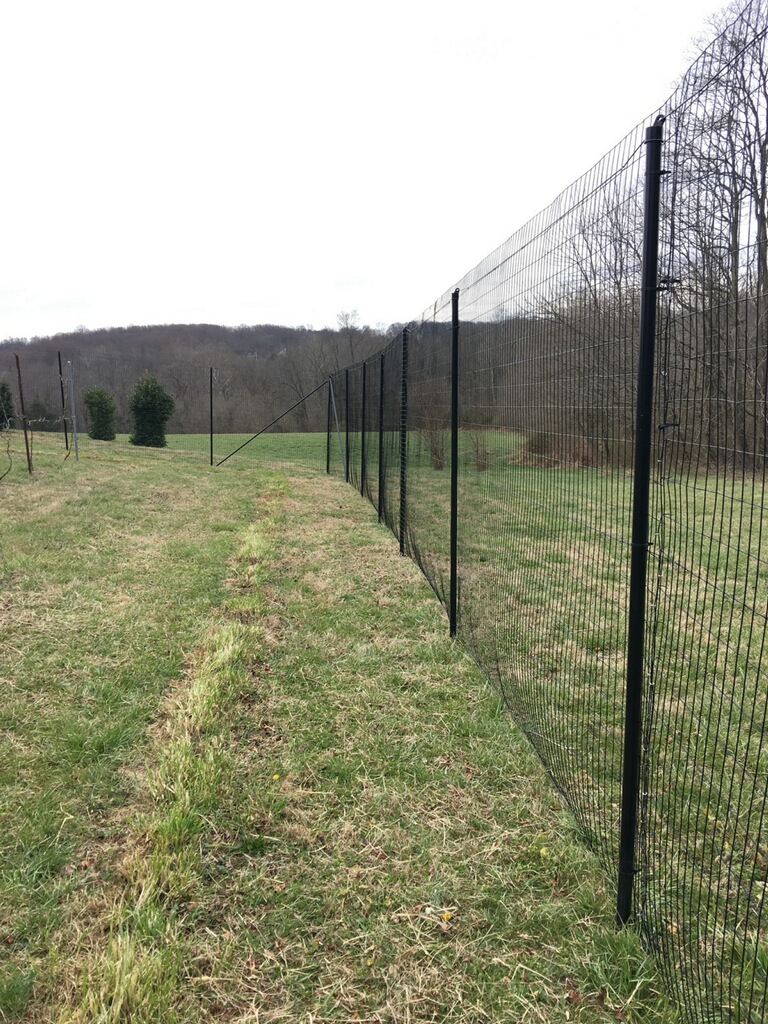 Welded wire fence Building Deerbusters 14 Gauge Welded Wire Deer Fence Serves As Both Reliable Deer And Rodent Barrier On Lawns And Gardens Deerbusters 14 Gauge Pvc Coated Welded Wire