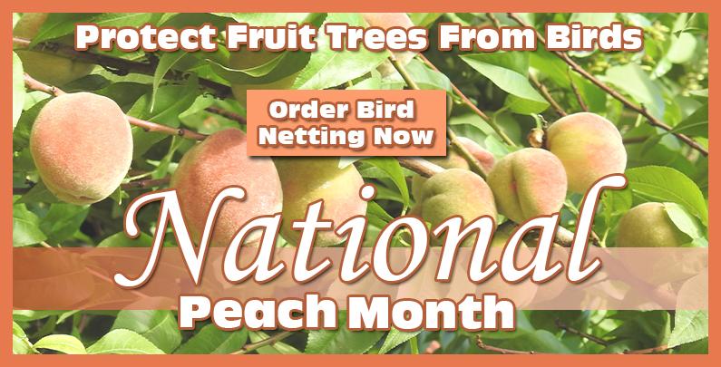 national-peach-month-carousel.jpg