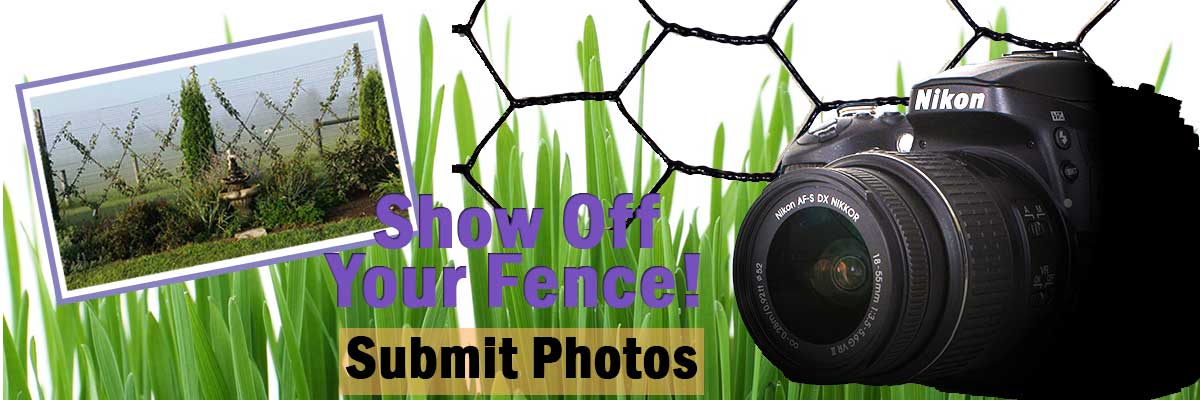submit-fence-photos2.jpg