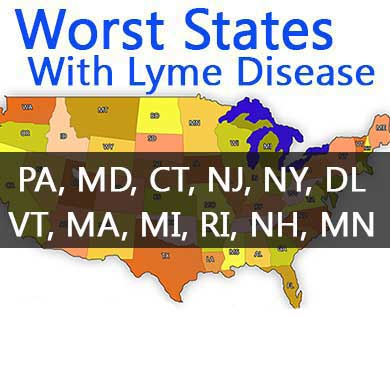 U.S. Cases Of Lyme Stats on lyme disease incidence map, medscape lyme disease map, usa lyme disease map, lyme's disease map, lyme disease in ohio map, lyme disease occurrence map, lyme disease regions map, lyme disease range map, lyme disease in dogs map, canada lyme disease map, lyme disease indiana map, lyme nh map, rocky mountain spotted fever map, lyme disease world map, 2014 state lyme disease map, tick disease map, lyme disease distribution map, 2014 wisconsin lyme disease map, lyme disease epidemiology map, lyme disease texas map,