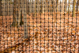 """6' x 90' Trident Multi-Purpose Fence 1"""" x 1"""" Mesh with Reinforced Bottom - Black"""