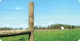 Hi Tensile Wire