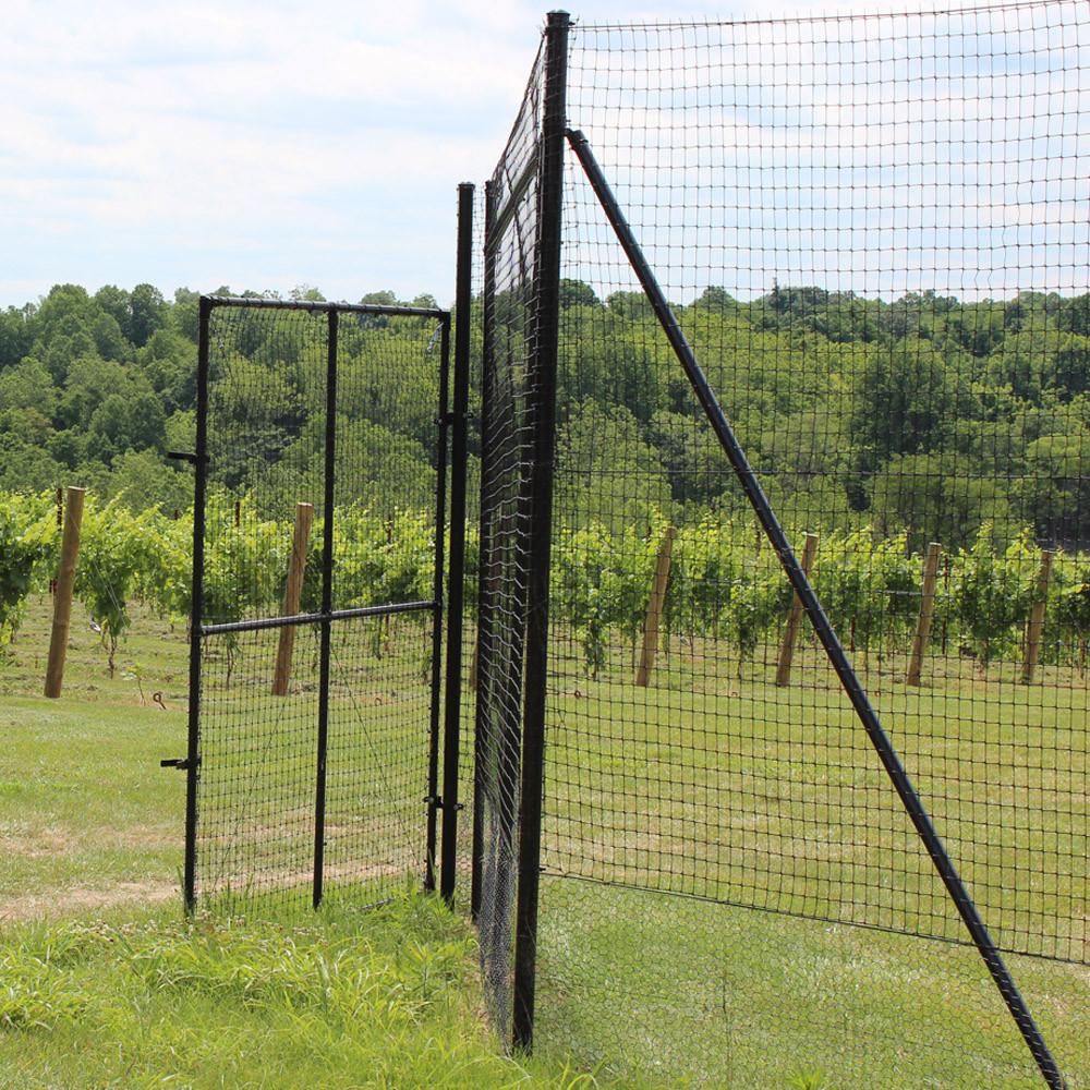 Types Of Fencing For Deer Management Deerbusters Com