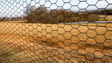 6' x 150' Steel Hex Web Blk PVC Coated Fence