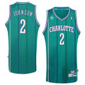 Charloette Hornets Larry Johnson Sewn Throwback Jersey