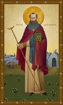 Icon of St. Columba - 20th c. - (1CA20)