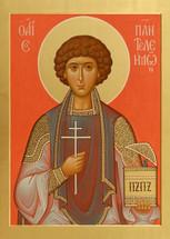 Icon of St. Panteleimon  - (1PA14)
