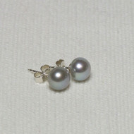 Silver Grey Pearl Stud Earrings