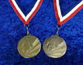 NEW Martial Arts Medals silver or gold on ribbon 50mm bargain set of 10