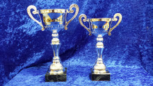 Silver metal handled bowl trophies