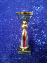 Red gold sale bowl trophy