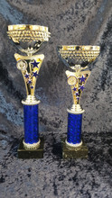 Silver/Blue Star Trophies