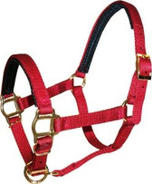 Nylon Padded Mini Halter by Triple E