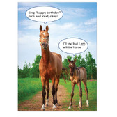 Birthday Card: Inside: some may say you're getting on in years, but I say neigh!            Happy Birthday!