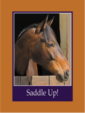 Outside: Saddle Up Inside: For the best birthday ever. Happy Birthday