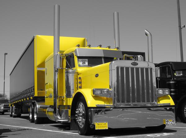 black-and-white-yellow-2-l.jpg