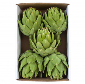 5 Heirloom Artichokes Gift Box - PLEASE READ IMPORTANT SHIPPING INFORMATION